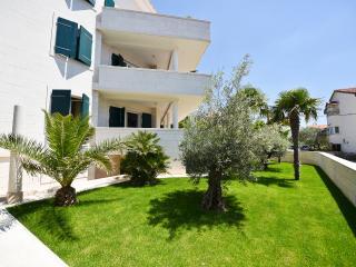 Front Yard - Olives&Palms