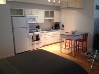 CHARMING, CLEAN AND COZY STUDIO APARTMENT, Chicago