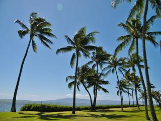 Oceanfront,  Island Views,  Remodel, Car included, Molokai