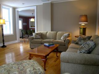 Large sunny living room with cable tv and wireless internet