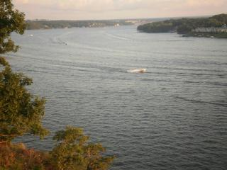 Studio  Unit 1 week left  6/26 to 7/3  $500, Lake Ozark