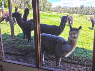 Valley Farm Vineyard - Cottage 1, Healesville
