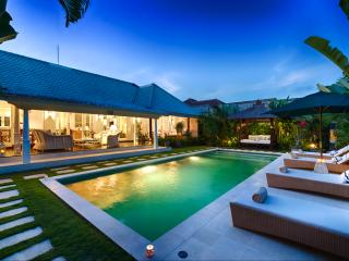 Hidden Paradise - Bali luxury villa rental - 3 BR