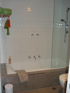 Full Size Bath with Shower
