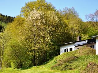 Eifel Landhaus Seeblick / Lake View Country House