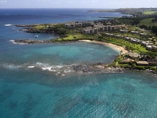 Napili Gardens - Koa Condo (#15) Short walk to the beach! Has AC and Wifi! - ID