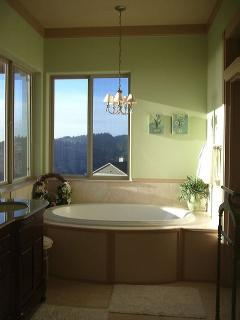 Spa tub in the Master Suite