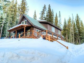 Custom Cabin with Amazing Views, 20 Min from Breck