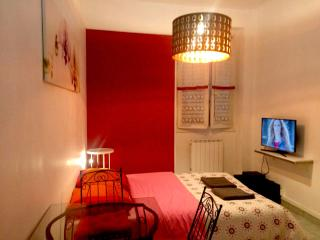 elegant  flat 4 person near realway station, Grenoble