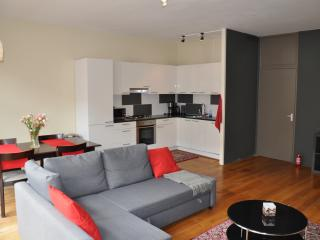 Renovated,spacious,affordable for up to six people, Ámsterdam