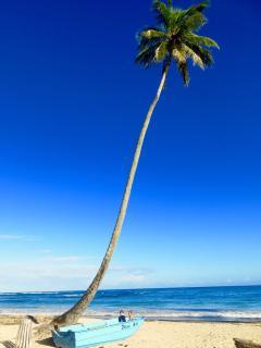 Playa La Boca (15 minutes from rental)