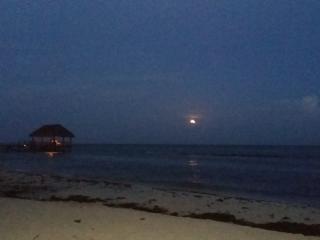CASA SOLA en  PLAYA del Carmen Mexico, Playa Paraíso