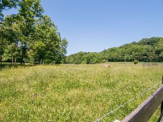 22-Acre Suburban Paradise w/ 3BR, Wildlife & Huge Deck, 17 Miles to Downtown