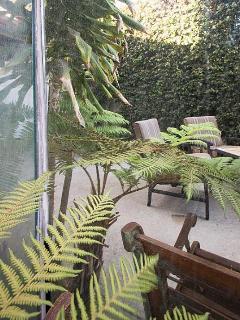 Backyard with patio furniture