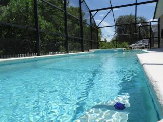 3 Master Suites + Pool & Spa + No Rear Neighbours, Clermont
