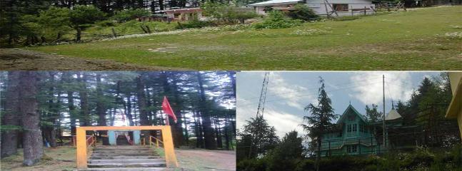 Tungeshvalley homestay, Shimla