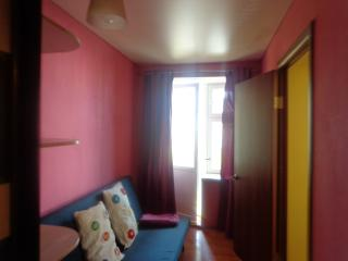 charming 52 m2 flat near the Belaya River in Ufa