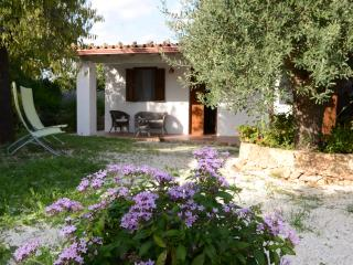Nice cottage 900 m from the sea and large plunge pool, Noto