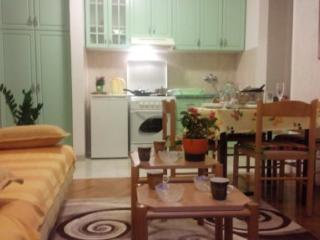 No.1 Apartment Budva