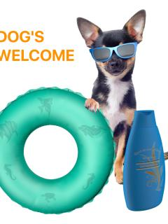 We Welcome Your Little Fluffy Friends, The Beach And Pub Are Also Dog Friendly.