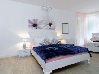 BIG LUXURY 3 ROOMS Central City Apt. MITTE