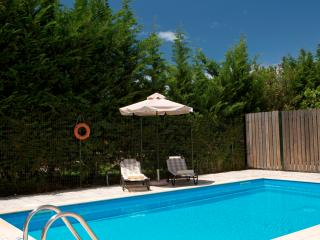 OFFER !!! - Family Villa Sonia with Private Pool, Kariotes