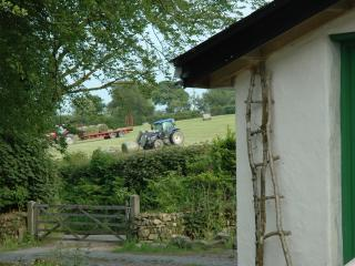 Beautiful cottage on farm with wood fired hot tub available for hire