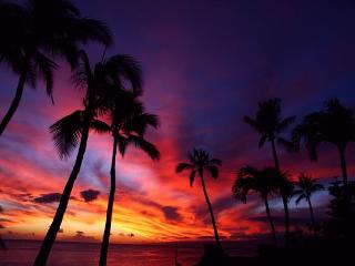 SPECIAL: $275/night to 12-13-16 Direct Oceanfront Central A/C Sleeps 6-8, Lahaina