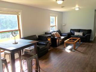 Newly renovated Oasis in the wood, Hinsdale