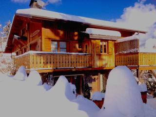 Chalet Champêtre  and The `garden Apartment January 2016 in deep fluffy snow