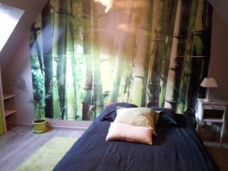 chambre  avec sa salle de bain + PDJ