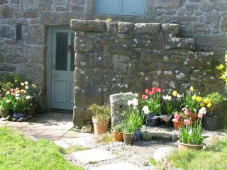 spring flowers by the front door