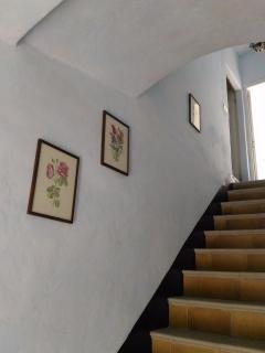 l'accesso al 1° piano tramite la caratteristica scala centrale e le stampe botaniche delle rose..