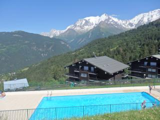Appartement face au Mont Blanc