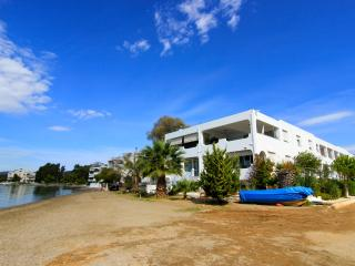 Seaview Beachfront Apartment in Eretria