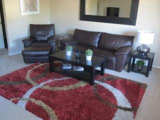 Nice lake condo!. Large living room, good decor., Chandler