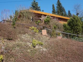 Rustiek gelegen nabij Willingen een houten chalet