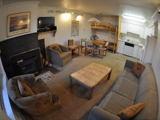Base Camp #20 Pet-Friendly One Bedroom, Kirkwood