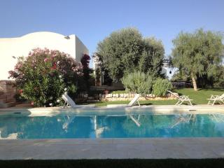 Tenuta Gemelli - Stay Here Forever! With Pool, Cisternino