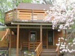 Renovated Cottage, Historic Area, Muskegon