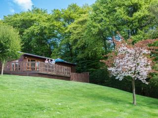 Silver Birch Lodge with Hot Tub, Cupar