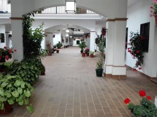 Alquiler Apartamento en El Rocío, El Rocio