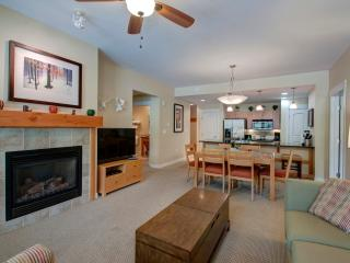 Premium 2 Bedroom Condo #3133, Winter Park