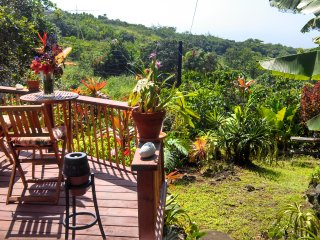 Summer Special $95 - Enchanting Tropical Cottage, Kealakekua