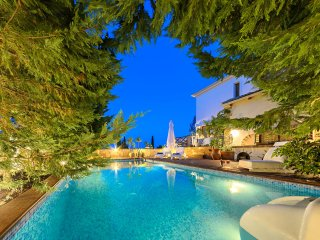 Ark Luxury Villa with Private Pool, Mouzaki