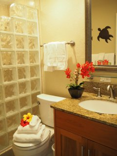 Bathrooms newly remodeled with walk in showers, custom vanities with granite countertops.
