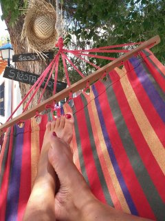 Hammock with lots of shade from the pine trees.