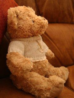 You forgot your teddy?  No problem!