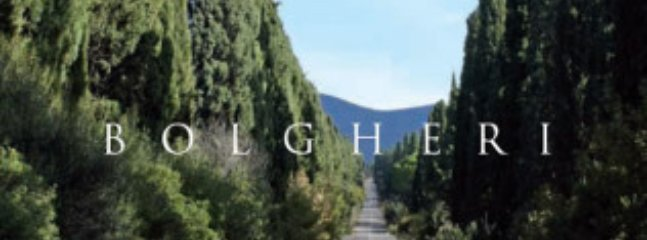 il famoso viale di Bolgheri descritto dal Poeta Giosuè Carducci (a pochi km. )