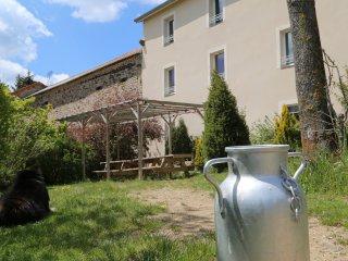 Grand gite piscine couverte,espace bien-être, Saint-Christophe-d'Allier